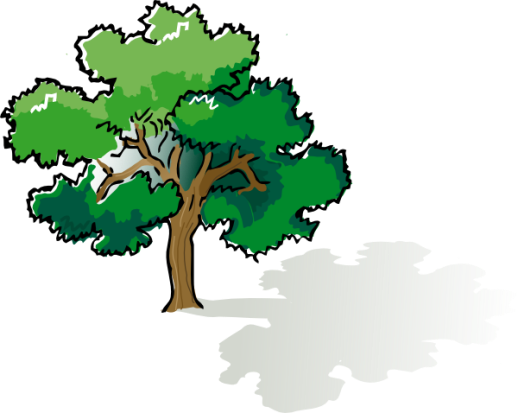 Tree Shade Clipart